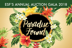 Auction Gala